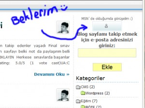 Windows Live Messenger Düğmesi