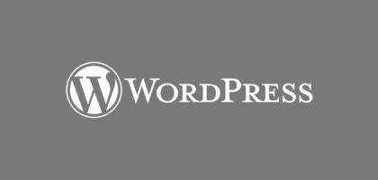 wordpres theme development