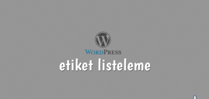 wordpress'te etiket listeleme