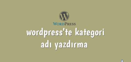 wordpress'te kategori adı yazdırma