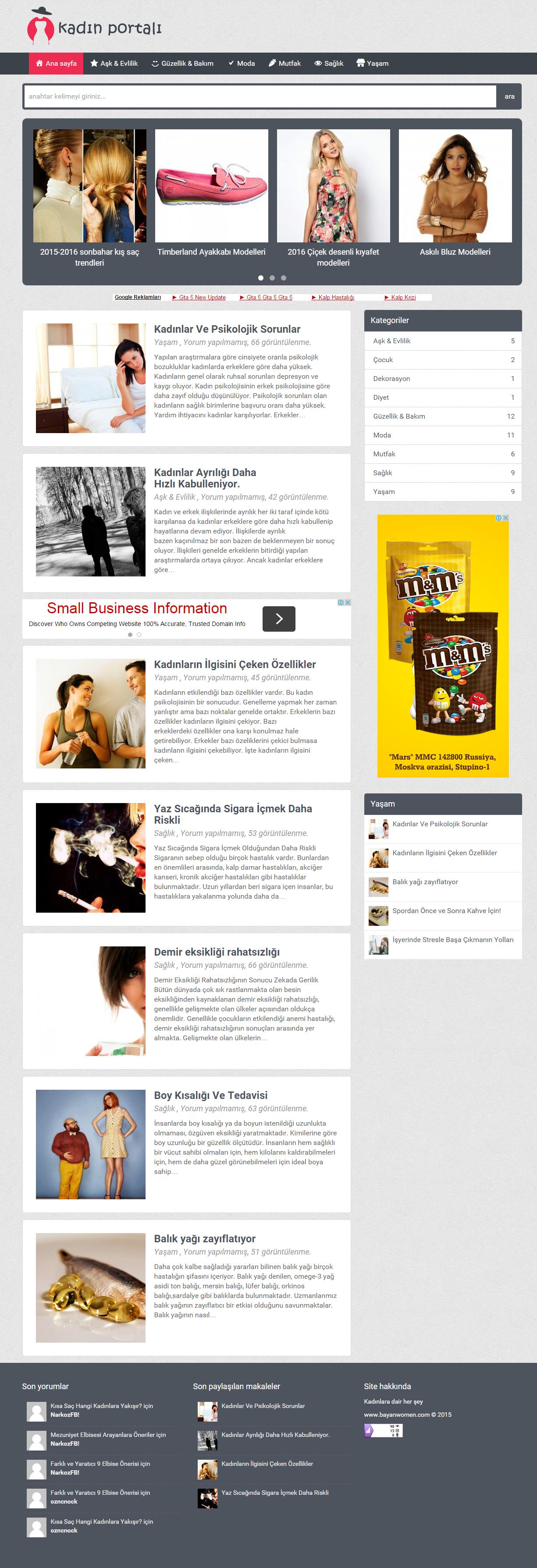SMDV1 wordpress theme homepage