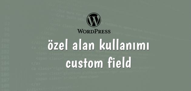 wordpress-ozel-alan-kullanimi-custom-fields