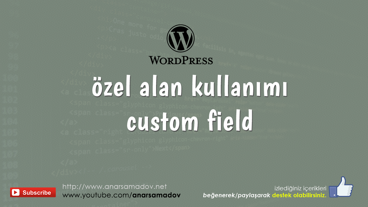 wordpress-ozel-alan-kullanimi-custom-fields