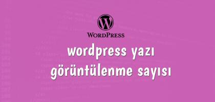 wordpress-yazi-goruntulenme-sayisi