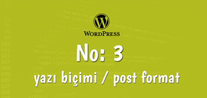 post formats wordpress-3