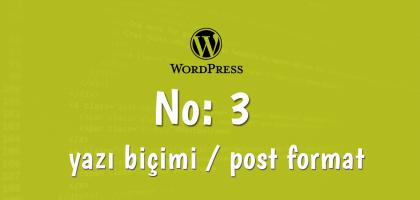 post formats wordpress-3