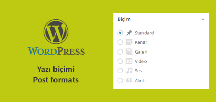 post formats wordpress