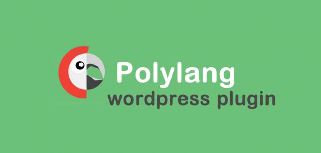 wordpress çoklu dil seçeneği