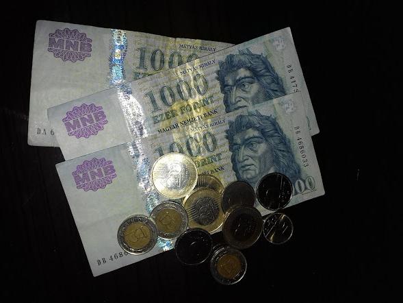 macaristan para birimi forint